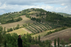 Chianti Wine Country
