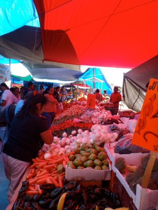 Market Selection