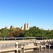 Top of the Met