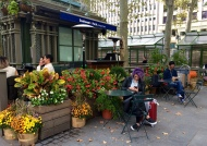 Bryant Park Sunday Afternoon