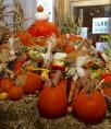 Eataly Pumpkins