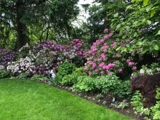 The glorious Church Garden